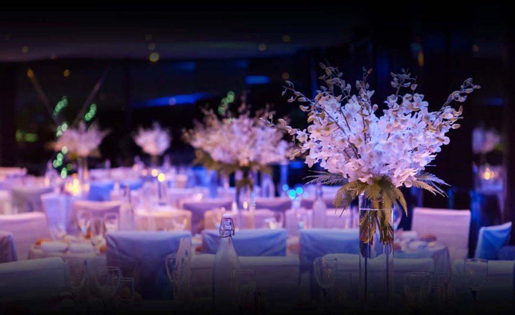 Luxury dinner cruise sydney